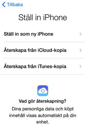 iPhone iPad återställning - Ställ in iPhone
