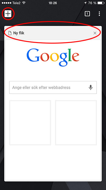 iPhone Chrome Surfa Privat 4