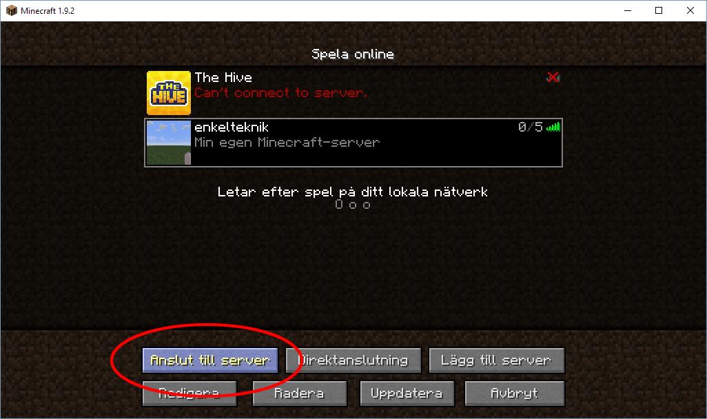 Minecraft - Anslut till server - En egen server