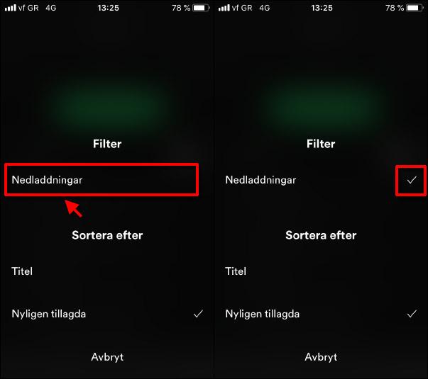 Spotify - Filter - Nedladdningar - Visa endast nedladdade
