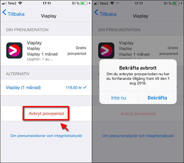 Prenumeration - Avbryt - Ta bort -iPhone - Bekräfta
