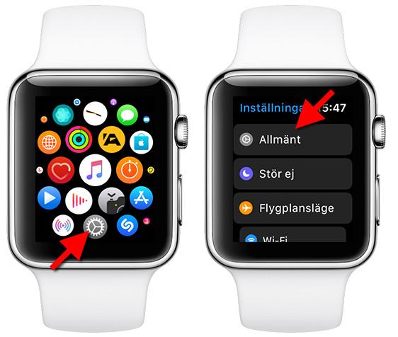 Apple Watch - Inställningar - Allmänt - Print Screen