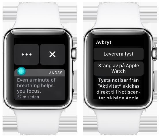 Apple Watch - Notiser - Ta bort - Leverera tyst