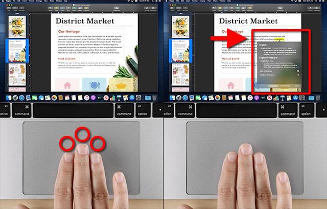 Trippelklicka på ett ord - macOS - Gester - Touchpad