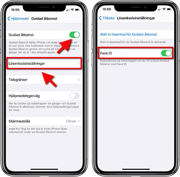 iPhone - Guidad åtkomst - Lösenkodsinställningar - Face-ID