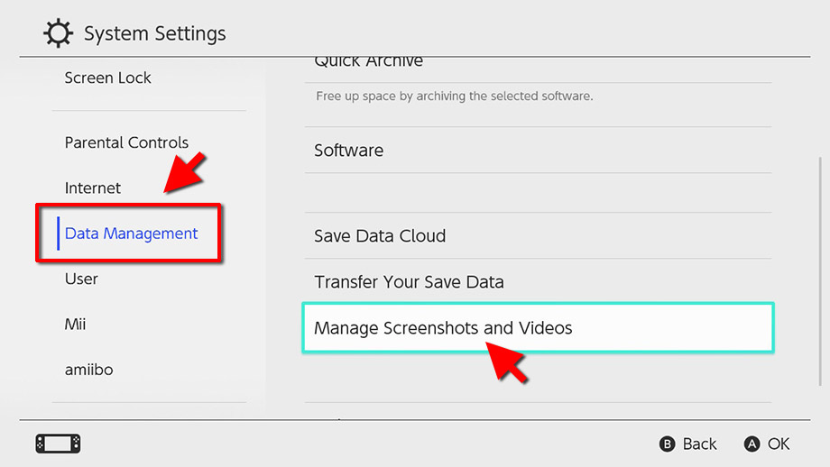 Switch - Data Management - Manage screenshots - Videos - Kopiera